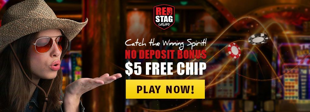Don't Miss the New Design at Red Stag Casino